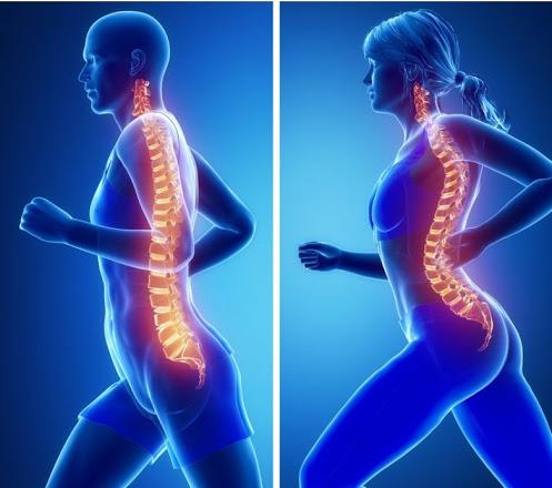 Как при остеохондрозе заниматься физкультурой